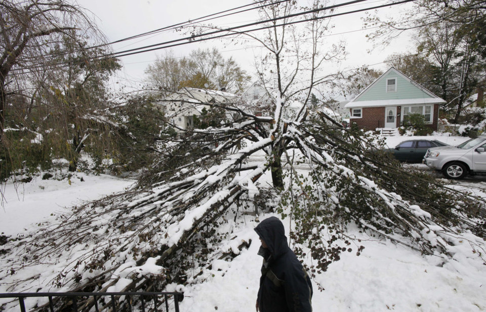 Photo - Firmo Banez poses next to a downed tree in front of his home in Elmont, N.Y., Thursday, Nov. 8, 2012. Firmo lost electrical power to the house following Superstorm Sandy ten days ago, had it restored Wednesday by the Long Island Power Authority, only to have it go out again Wednesday night during a Nor'easter snowstorm. (AP Photo/Mark Lennihan) ORG XMIT: NYML108