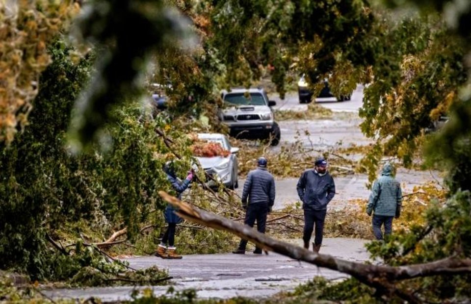 Photo -  Neighbors in Heritage Hills survey the damage as debris from broken ice covered trees litter the road on NW 14 as ice weighed down branches throughout the metro on Tuesday. [CHRIS LANDSBERGER/THE OKLAHOMAN]