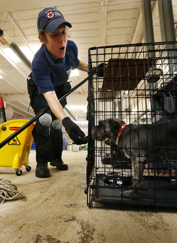 Photo - Anita Patterson, Allentown, Penn. and other volunteers work with pets that survived the Moore Tornado at the Cleveland County Fairgrounds on Wednesday, May 29, 2013 in Norman, Okla. Photo by Steve Sisney, The Oklahoman