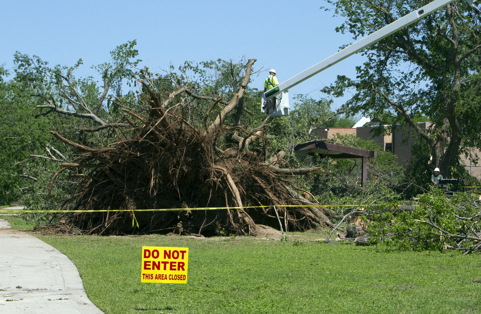 Workers remove a giant root ball and tree blown over in Rotary Park at Boyd Street and Wylie Road during the April 13 tornado in Norman. PHOTO BY STEVE SISNEY, THE OKLAHOMAN