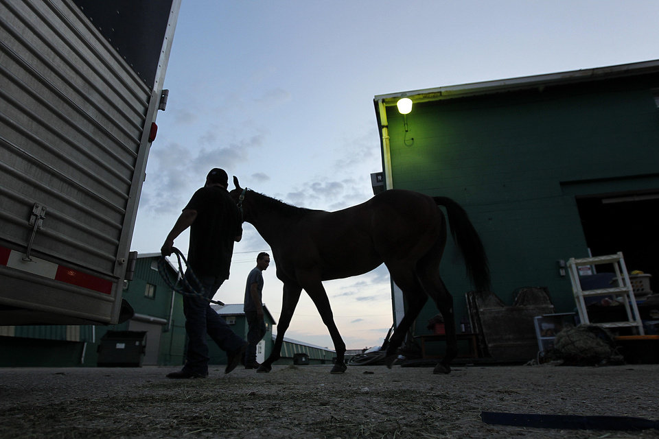Workers move horses into trailers at the Fair Grounds Race Course & Slots, after a mandatory evacuation of the animals was issued by the track, in preparation for Tropical Storm Isaac, which is expected to become a hurricane as it moves into the Gulf of Mexico, in New Orleans, Sunday, Aug. 26, 2012. (AP Photo/Gerald Herbert) ORG XMIT: LAGH103