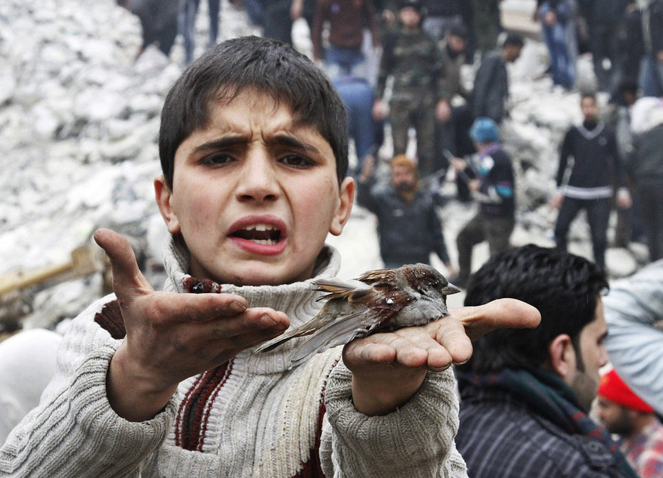 Photo - A Syrian boy holds a bird in his hand that he said was injured in a government airstrike hit the neighborhood of Ansari, in Aleppo, Syria, Sunday, Feb. 3, 2013.  The Britain-based activist group Syrian Observatory for Human Rights, which opposes the regime, said government troops bombarded a building in Aleppo's rebel-held neighborhood of Eastern Ansari that killed over 10 people, including at least five children. (AP Photo/Abdullah al-Yassin)