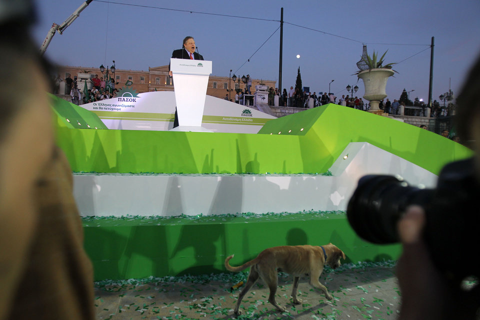 Photo -   A stray dog passes in front of the podium during Greece's socialist leader, Evangelos Venizelos' speech in central Athens' Syntagma Square on Friday, May 4, 2012. Fewer than 5,000 people turned up at the socialists' final rally ahead of Sunday's election. (AP Photo/Thanassis Stavrakis)