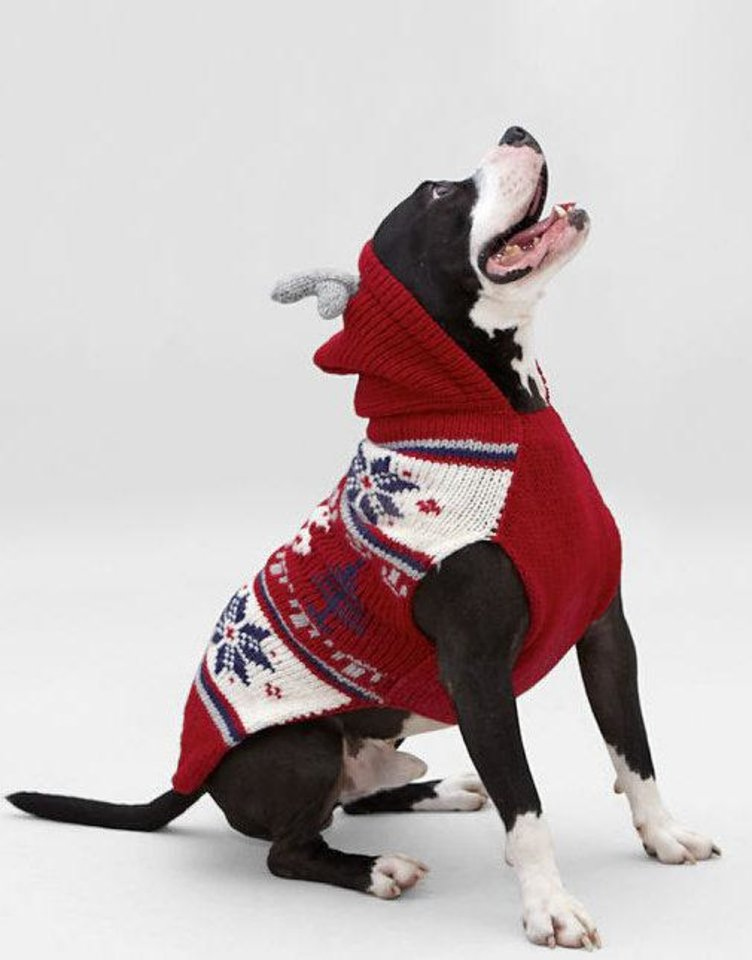Dog sweater sold at www.landsend.com. <strong></strong>