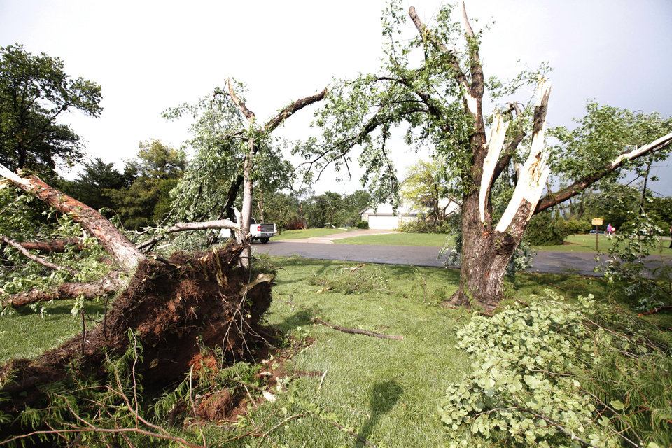 Photo - Trees uprooted at a home at Persimmon Creek and Yucca in the Arrowhead Hills addition in Edmond, Okla., lay across a lawn after a tornado touched down, Sunday, May 19, 2013. (AP Photo/The Oklahoman, Paul Helstern)
