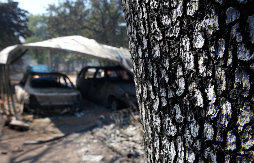 Photo - Ashen white bark of a tree on property at 6409 NE 71 with two cars underneath a covering. The cars and the mobile home here were destroyed when wildfires ravaged land and property that stretched from NE 50 on the south to Hefner Road on the north.  The fire extended from Sooner Road to Midwest Blvd.    Photo taken Wednesday, Aug. 31, 2011. Photo by Jim Beckel, The Oklahoman