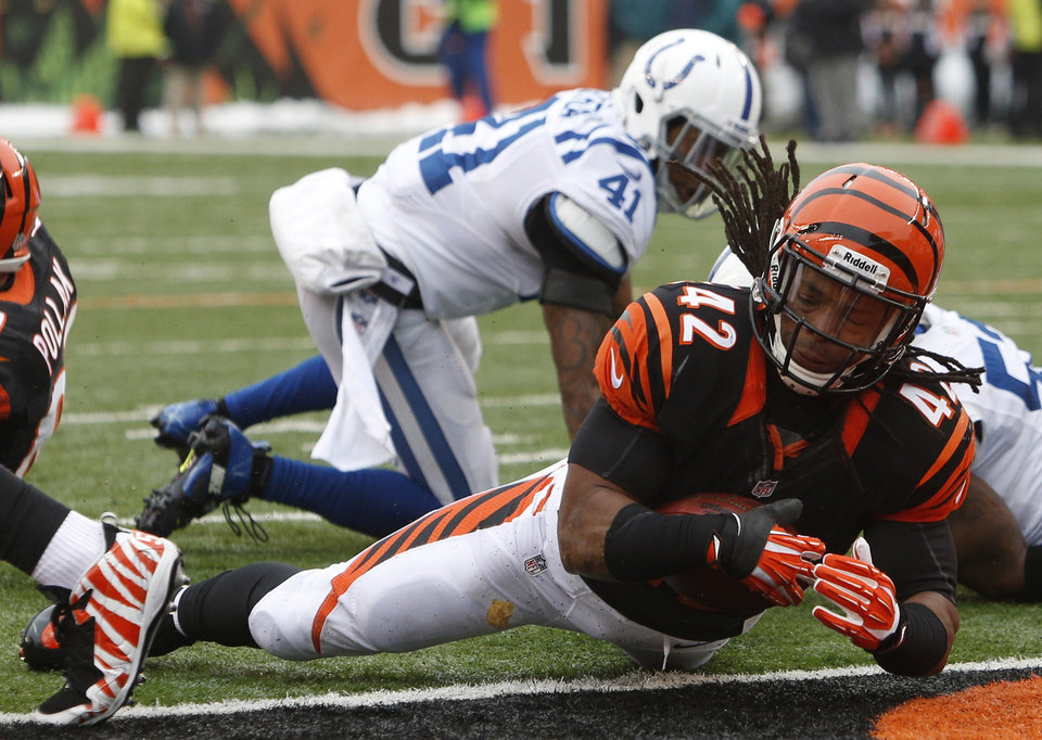 Photo - Cincinnati Bengals running back BenJarvus Green-Ellis (42) scores a touchdown on a one-yard run in the first half of an NFL football game against the Indianapolis Colts, Sunday, Dec. 8, 2013, in Cincinnati. (AP Photo/David Kohl)