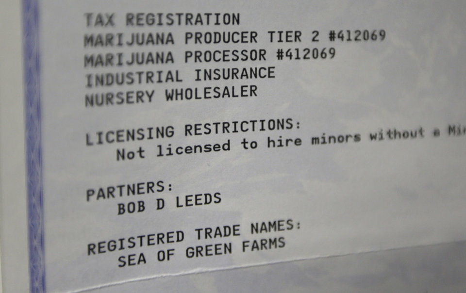 Photo - This June 25, 2014, photo shows the Washington state business license for marijuana grower Sea of Green Farms at the establishment in Seattle. The business is the first licensed grower in Seattle for recreational marijuana. (AP Photo/Ted S. Warren)
