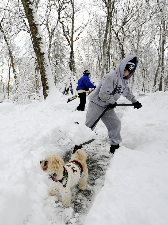 Jack Katovitz, 14, clears a path for Lucky, a Yorkie Poodle, on his driveway that was covered with over a foot of snow after a storm on Saturday, Feb. 9, 2013, in Lattingtown, N.Y. (AP Photo/Kathy Kmonicek) ORG XMIT: NYKK117