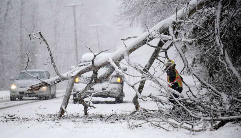 Photo - Volunteers remove a downed tree on the road  near Chancellorsville, Va.  A snowstorm blanketed the Fredericksburg region on March 6, 2013, closing schools, county governments and roads.   (AP Photo/The Free Lance-Star, Reza A. Marvashti)