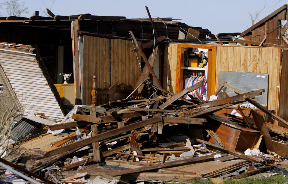Photo - TORNADO DAMAGE: A dog watches after his damaged house after a Saturday tornado hit Picher, Okla., Sunday, May 11, 2008. BY MATT STRASEN, THE OKLAHOMAN ORG XMIT: KOD