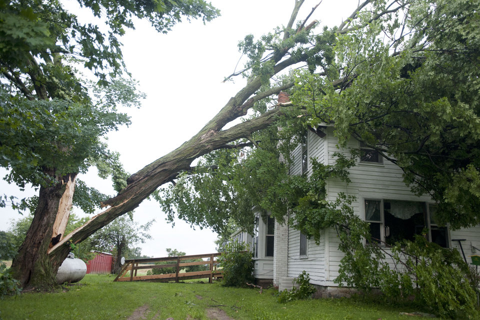 Photo - Part of a maple tree lies on a house after storms on Tuesday, July 1, 2014, in Jackson, Mich. Severe thunderstorms packing high winds knocked down trees and power lines across parts of Michigan, leaving more than 230,000 without power and injuring a firefighter. (AP Photo/The Jackson Citizen Patriot, J. Scott Park) ALL LOCAL TELEVISION OUT; LOCAL TELEVISION INTERNET OUT