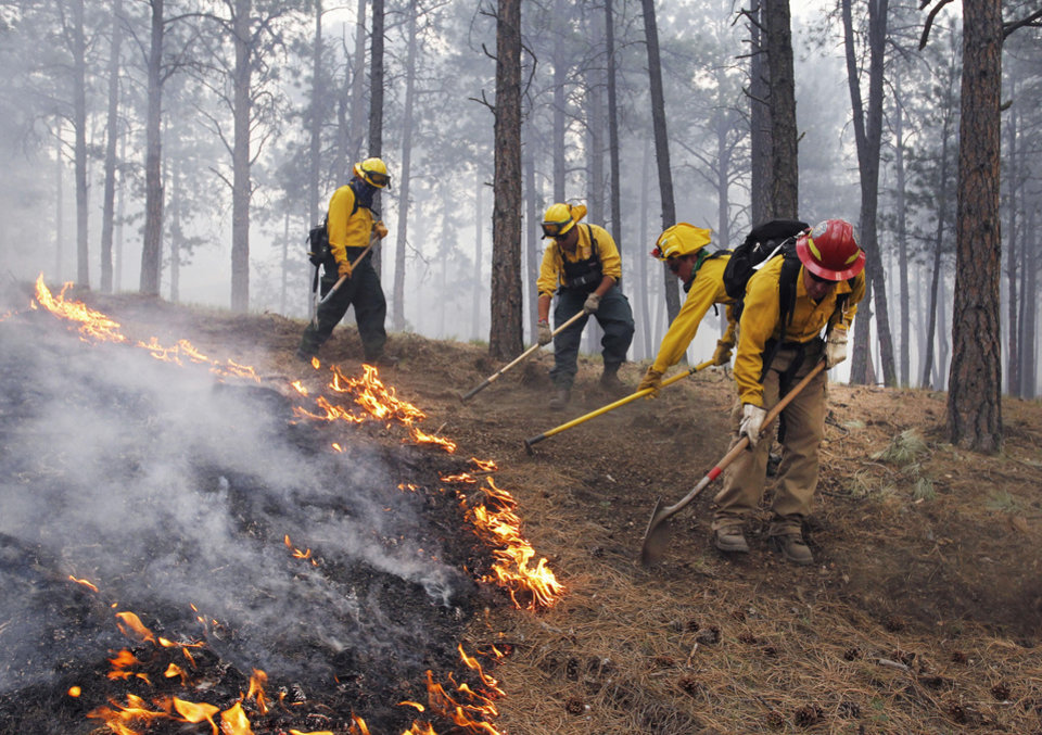 Photo - Black Forest Fire Dept. officers burn off natural ground fuel in an evacuated neighborhood, prepping the area for the encroachment of the wildfire in the Black Forest area north of Colorado Springs, Colo., on Wednesday, June 12, 2013. The number of houses destroyed by the Black Forest fire could grow to around 100, and authorities fear it's possible that some people who stayed behind might have died. (AP Photo/Brennan Linsley)