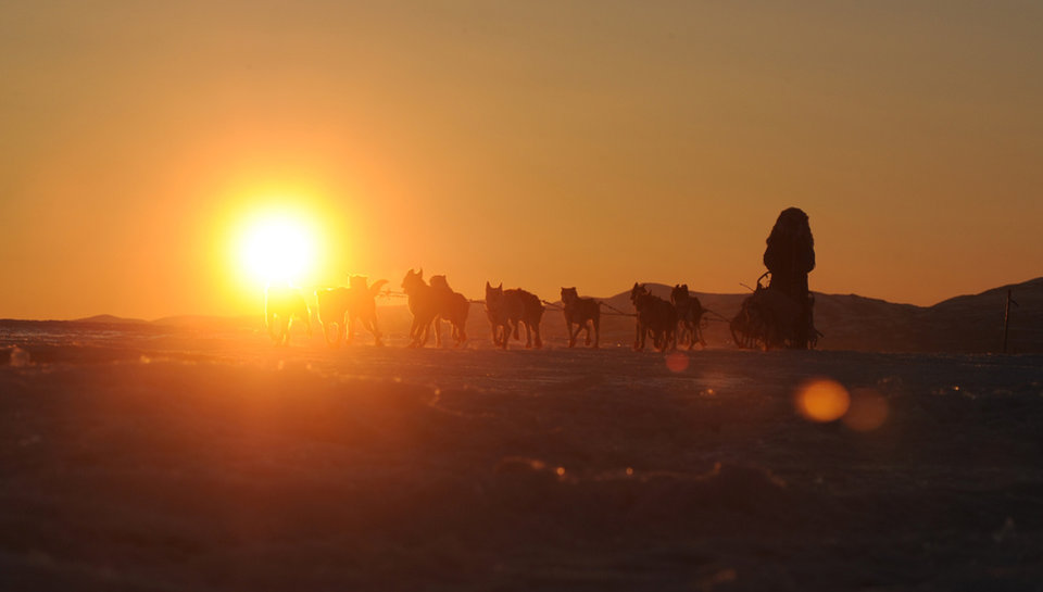 Photo - Iditarod musher John Baker, from Kotzebue, AK, comes into the Unalakleet checkpoint at sunrise during the 2014 Iditarod Trail Sled Dog Race on Sunday, March 9, 2014. (AP Photo/The Anchorage Daily News, Bob Hallinen)