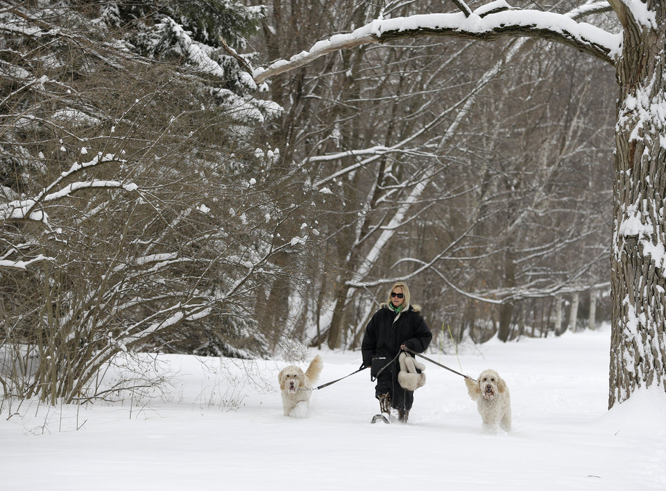 Photo - Julia Pollock wears snow shoes to take her goldendoodles, Cody, left, and Bond, right, for a walk in the fresh snow Wednesday, Feb. 5, 2014, in Shaker Heights, Ohio.  Most of Ohio was hit with another bout or heavy snow and freezing rain, closing hundreds schools and creating extremely hazardous driving conditions. Much of the state was slammed with 4 to 8 inches of snow overnight. (AP Photo/Tony Dejak)
