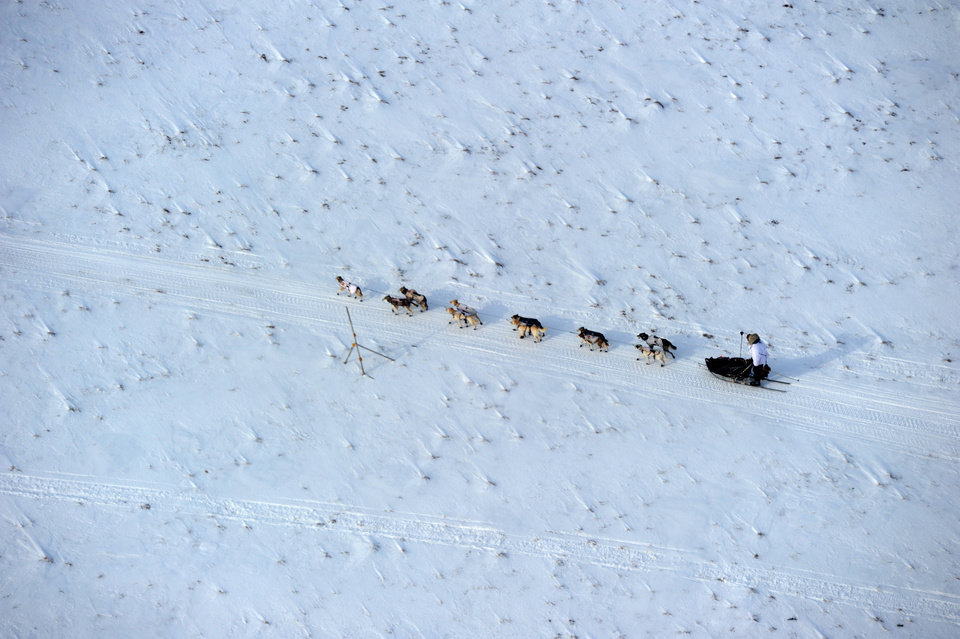 Photo - Iditarod musher Aliy Zirkle, from Two Rivers, Alaska, mushes between the checkpoints of White Mountain and Safety, the last checkpoint before the finish line in Nome. Zirkle was the second musher to leave the White Mountain checkpoint during the 2014 Iditarod Trail Sled Dog Race on Monday, March 10, 2014. (AP Photo/The Anchorage Daily News, Bob Hallinen)