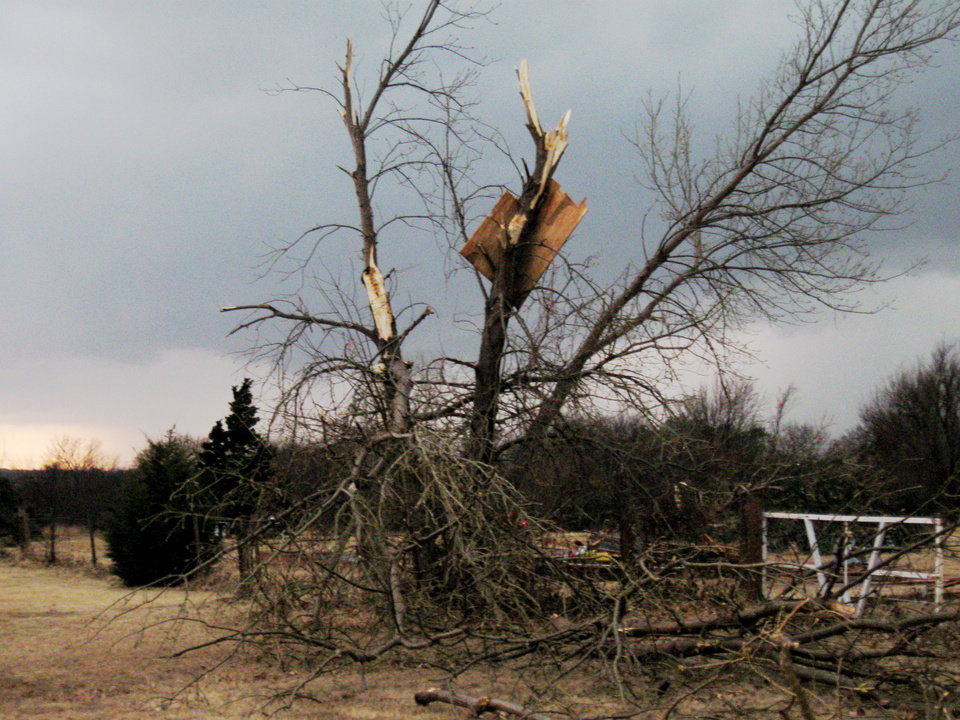Photo - Tree damage and debris in Edmond. PHOTO BY JOHN A. WILLIAMS, THE OKLAHOMAN