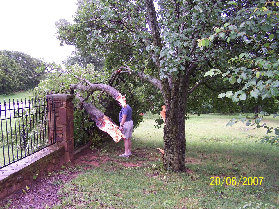 Windy!  We heard the gust during the night...and saw the results on 6/20.  My husband has his work cut out for him...and his chaisaw!<br/><b>Community Photo By:</b> Kathie Spitz<br/><b>Submitted By:</b> Kathie, Oklahoma City