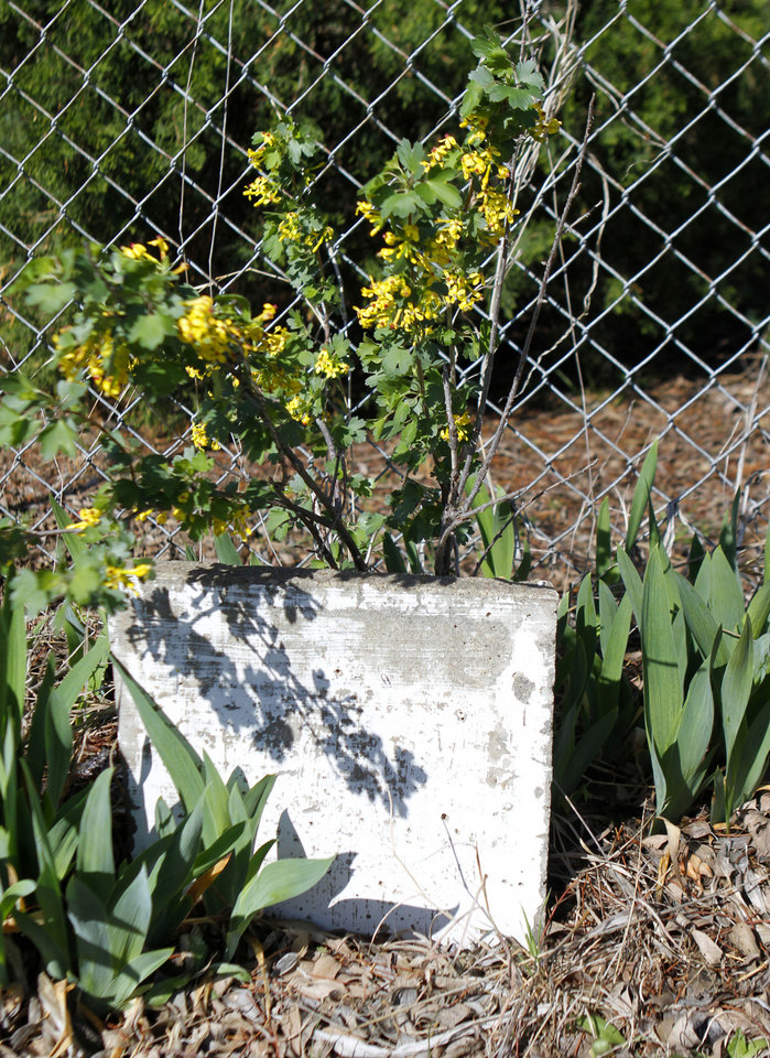 A weathered headstone in the Lutheran cemetery on NW 150th street in Oklahoma City , Thursday April 11, 2013. Photo By Steve Gooch, The Oklahoman ORG XMIT: OKC1303121532440650