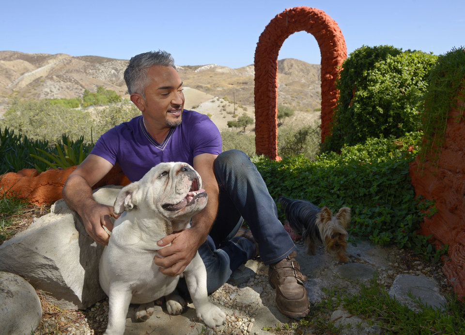In this Oct. 18, 2012 photo, Cesar Millan poses with his English Bull Dog George, left, and an unidentified dog at his Dog Psychology Center, in Santa Clarita, Calif. Millan\'s seventh book,