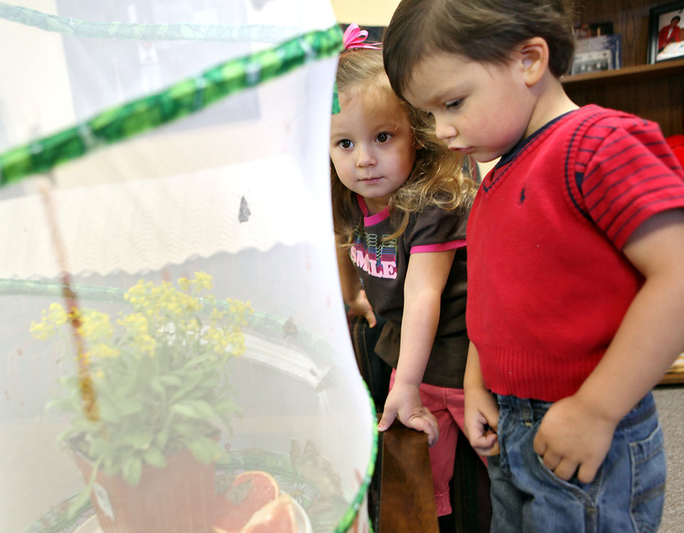 Photo - BUTTERFLY: Reagan Oltmanns, left, 3, and John Moss, 3, pose with butterflies at First Christian Church in Yukon on Tuesday, April 7, 2009. The church hopes to release the butterflies on Easter Sunday.  Photo by John Clanton, The Oklahoman ORG XMIT: KOD