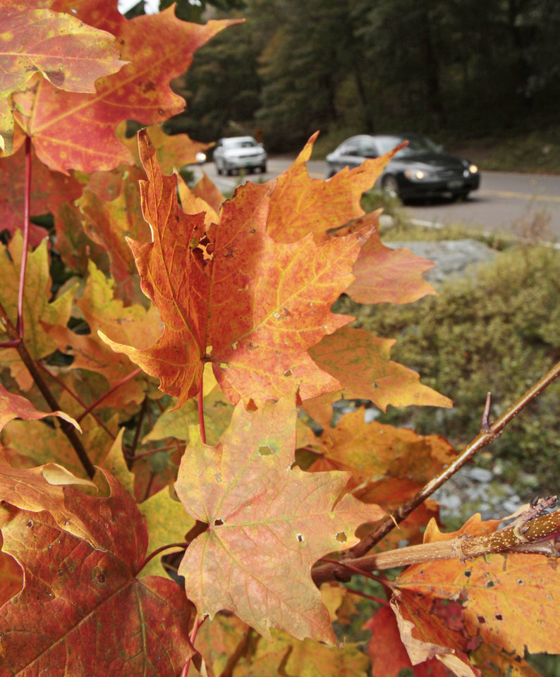 Photo -   In this Sept. 16, 2011 photo, autos drive by colorful foliage in Smugglers Notch in Stowe, Vt. Mountain and lake views along with fall foliage can be had for free in Vermont's largest city of Burlington, which feels more like a big town than a city. (AP Photo/Toby Talbot)