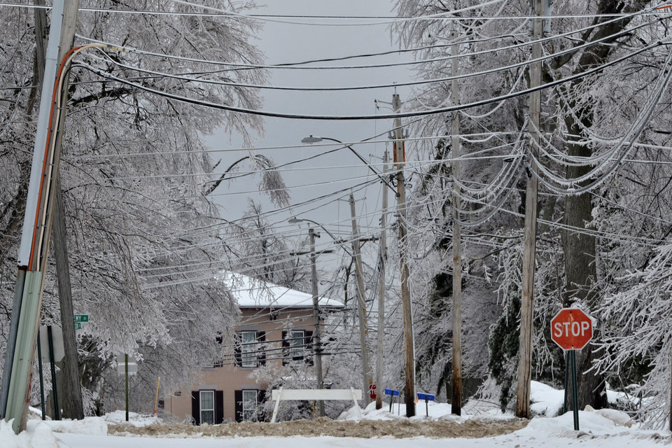 Photo - Ice covers the trees in the Lake Ontario village of Chaumont, 12 miles West of Watertown, N.Y., Sunday, Dec. 22, 2013. (AP Photo/The Post-Standard, Gary Walts)