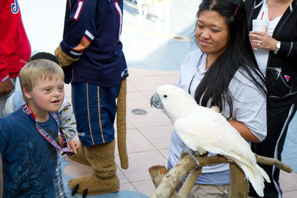 Photo - 9-year-old Reis Wathen watches Zeppy the cockatiel with Holly Ray at the Oklahoma City Zoo Friday, June 1, 2012. Photo by Steven Maupin, for The Oklahoman  Steven Maupin