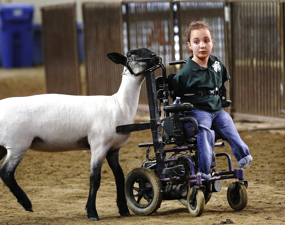 Photo -      Shelby Frost uses her motorized wheelchair, which has been adapted, to show her sheep at the Oklahoma Youth Expo. Frost, 11, is a member of Mulhall-Orlando 4-H Club. Photo by Jim Beckel, The Oklahoman   Jim Beckel -  THE OKLAHOMAN