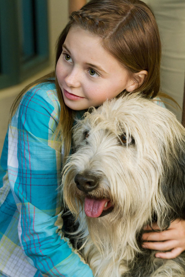 "Katie Hawkins is shown with BugZ in the movie ""Puppy Love."" HALLMARK CHANNEL PHOTO <strong>Alexx Henry</strong>"