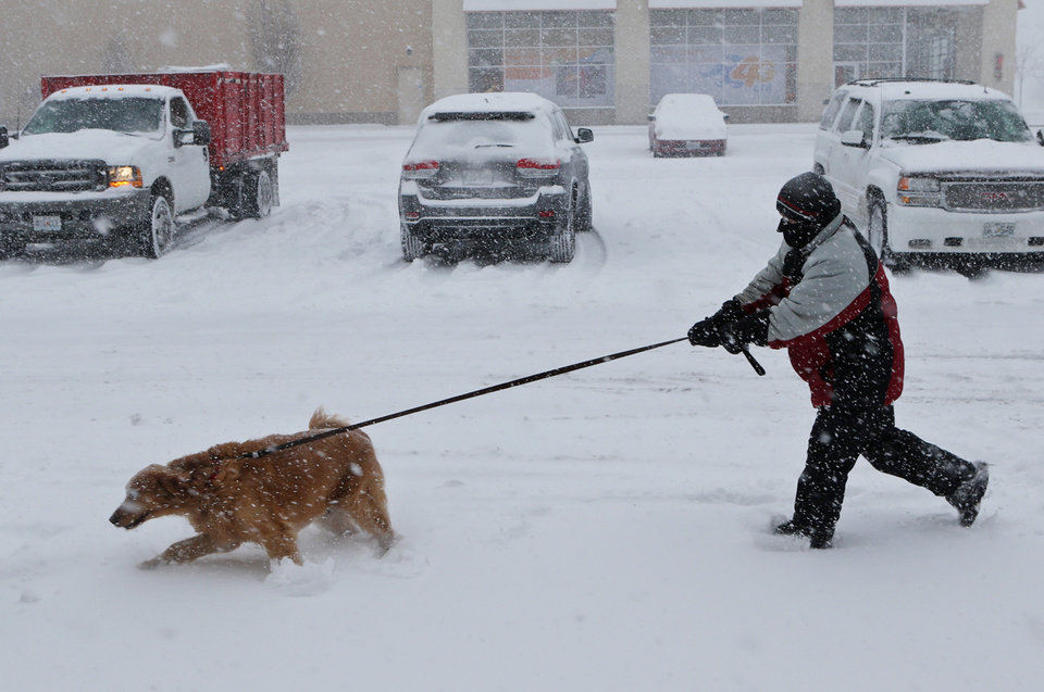 Photo - Ryan Metcalf tries to hang on to his golden retriever, Daisy, Sunday, Jan. 5, 2014, in Brentwood, Mo. Metcalf said that Daisy loves the snow. Snow-covered roads and high winds were creating dangerous driving conditions from Missouri to Delaware on Sunday ahead of a