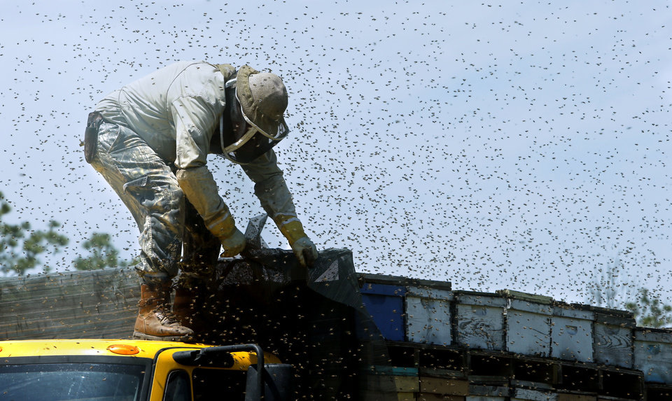 A worker unloads a shipment of bee hives from Texas for Brian Royal at his home based business at Norman.  <strong>STEVE SISNEY - THE OKLAHOMAN</strong>