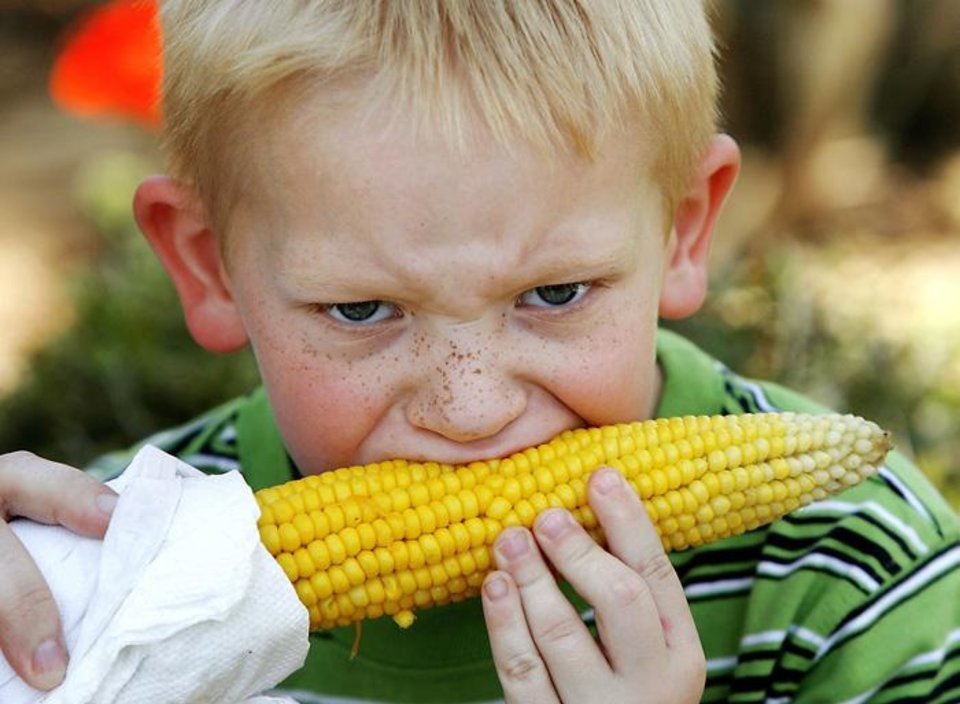 Photo -  ARTS FESTIVAL / FOOD: With two of his bottom teeth loose, Ryan Jones, 6, struggles to get a good bite into this ear of roasted corn at the Festival of the Arts in Oklahoma City Thursday, April 23, 2009.  The festival ends Sunday.  Photo by JIM BECKEL, THE OKLAHOMAN ORG XMIT: KOD