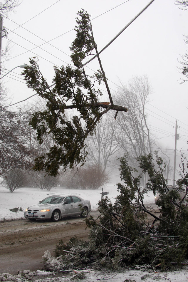 Photo - Cars pass under a branch from a fallen pine tree that dangles on a power line across West Ave. at the intersection of Morningside Dr. during the snowstorm Thursday Dec. 20, 2012 in Burlington, Iowa. The weather changed from rain to high winds causing white out conditions. (AP Photo/The Hawk Eye, John Gaines)