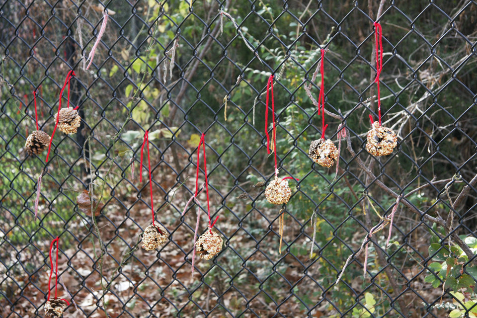 Photo - Shown are bird feeders made by children -- using pine cones, lard and birdseed -- at the National Cowboy & Western Heritage Museum during a Saturdays for Kids activity. This year, the