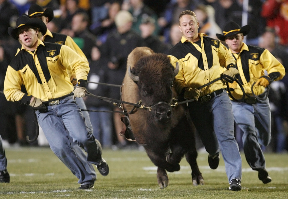 Photo - Colorado mascot Ralphie takes the field before the college football game between Oklahoma State University and University of Colorado at Folsom Field in Boulder, Colo., Saturday, Nov. 15, 2008. BY NATE BILLINGS, THE OKLAHOMAN