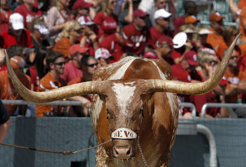 Texas mascot Bevo stands on the field during the Red River Rivalry college football game between the University of Oklahoma Sooners (OU) and the University of Texas Longhorns (UT) at the Cotton Bowl on Saturday, Oct. 2, 2010, in Dallas, Texas.   Photo by Chris Landsberger, The Oklahoman ORG XMIT: KOD