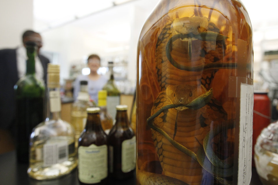 In this Thursday, April 19, 2012 photo, a bottle of snake liquor is seen on a lab bench at the U.S. Department of Treasury's Alcohol and Tobacco Tax and Trade Bureau, in Beltsville, Md.  The bureau, which collects taxes on booze and smokes and tells the companies that produce them how to do business, is one example of the specialized government offices threatened by Washington�s current zeal for cost-cutting. (AP Photo/Charles Dharapak)