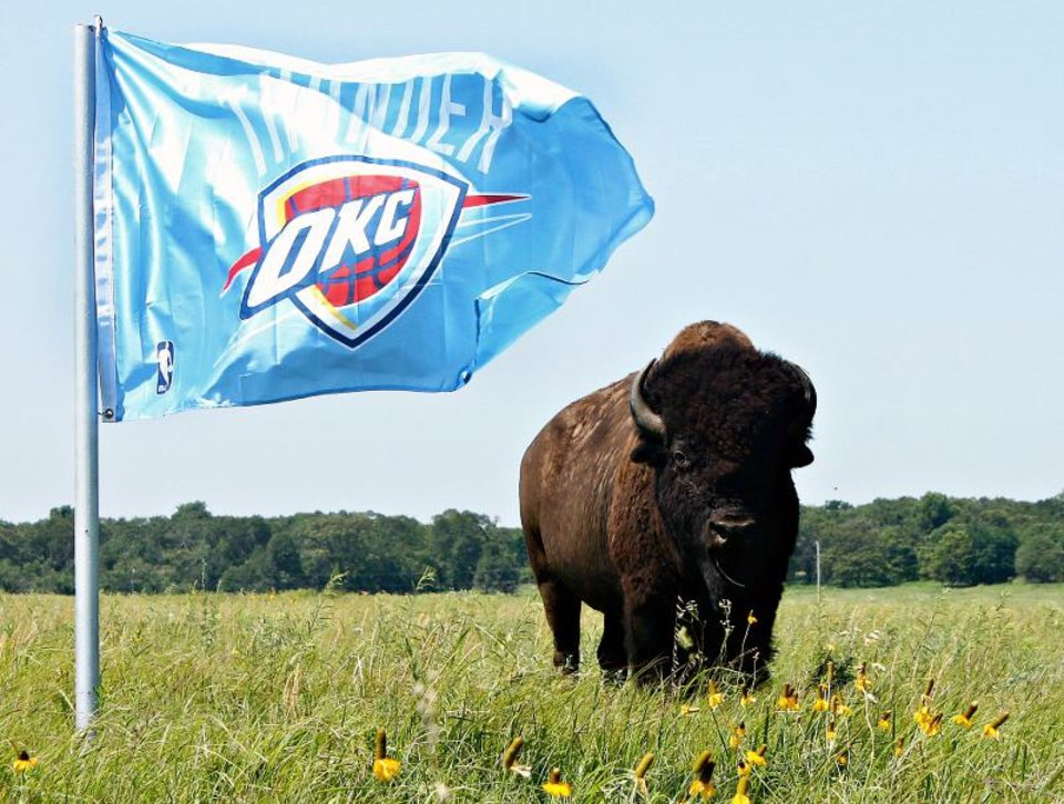 Bison Thunder Up!