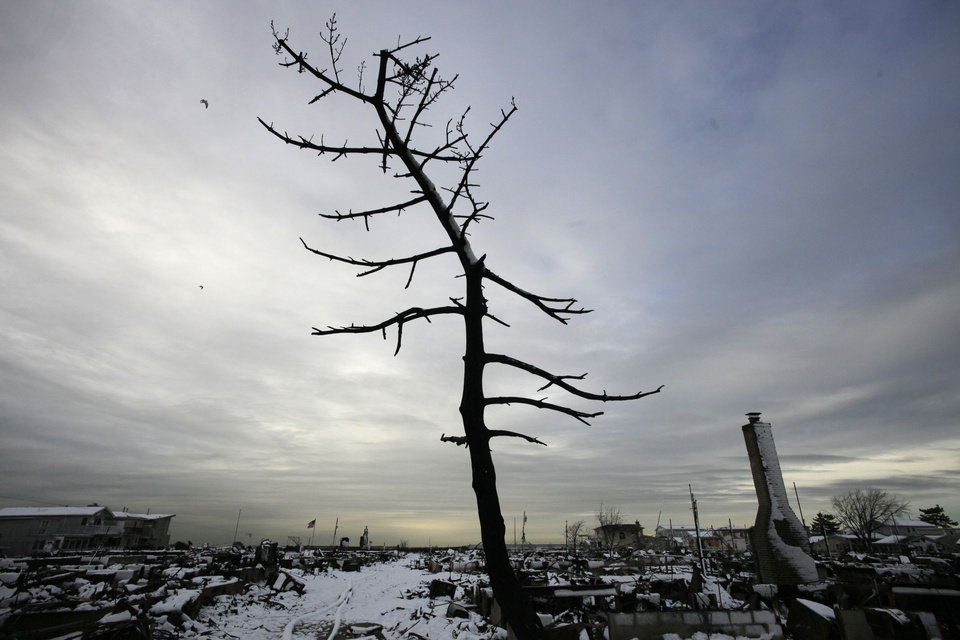 Photo - A  fire-scorched tree stands in the landscape of Breezy Point after a Nor'easter snow, Thursday, Nov. 8, 2012 in New York.  The beachfront neighborhood was devastated during Superstorm Sandy when a fire pushed by the raging winds destroyed many homes.  (AP Photo/Mark Lennihan) ORG XMIT: NYML103