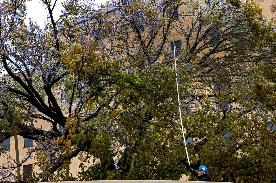 Photo - Crews work to knock ice of the Survivor Tree at the Oklahoma City National Memorial & Museum in Oklahoma City, Okla. on Tuesday, Oct. 27, 2020, after a winter blast covered the state with ice. [Chris Landsberger/The Oklahoman]