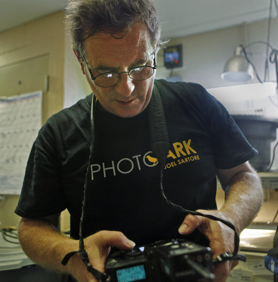 Photo -  Photographer Joel Sartore looks at a photo on his camera as he photographs a snake for the Photo Ark project at the Oklahoma City Zoo on July 27. Sartore is trying to take studio portraits of every known animal in captivity. Photo by K.T. King, The Oklahoman   KT King -