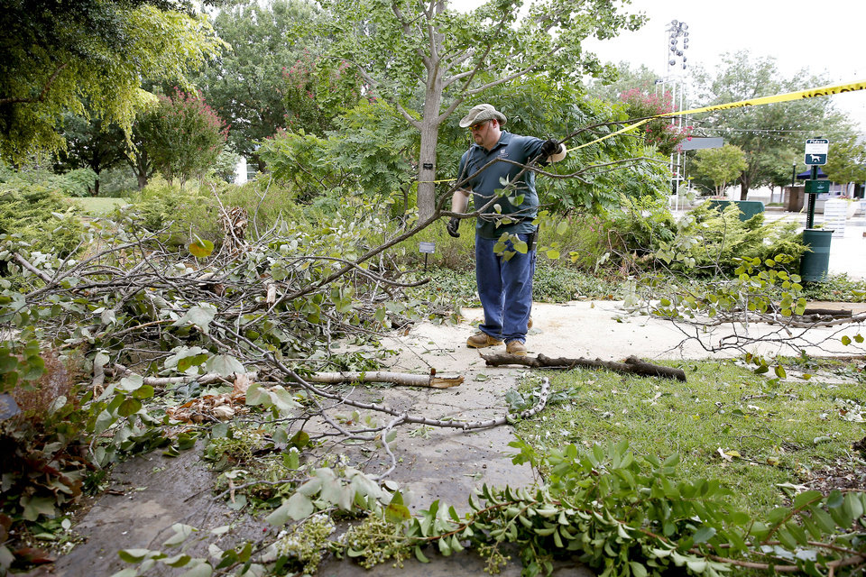 Photo - Groundskeeper at the Myriad Botanical Gardens Tim Green, clears away damaged trees, Tuesday, Aug. 27, 2019, after high winds the night before caused damage. [Bryan Terry/The Oklahoman]