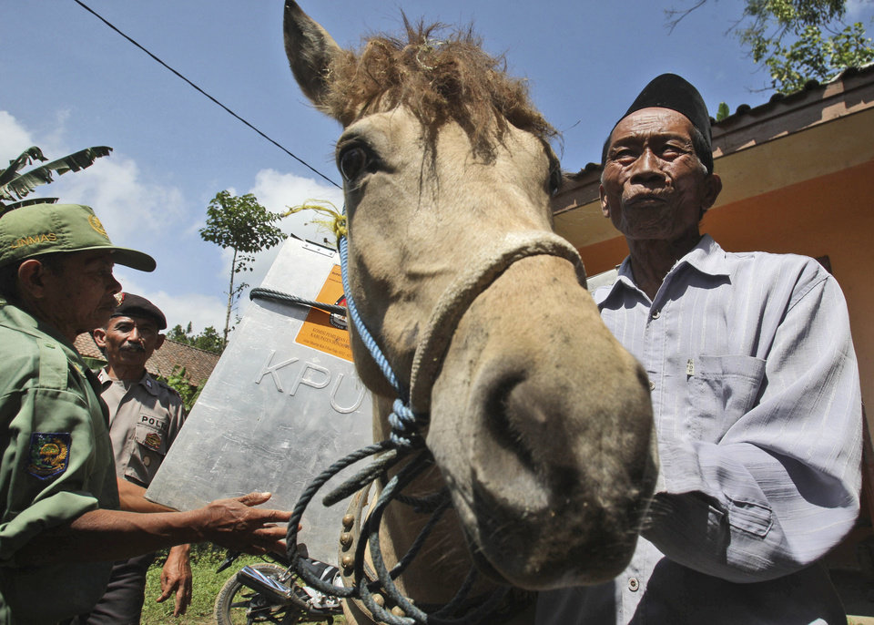 Photo - Electoral workers load a ballot box onto a horse as they prepare to distribute ballot boxes to polling stations in remote areas in Tlogosari, East Java, Indonesia, Tuesday, July 8, 2014. As the world's third-largest democracy prepares to elect a new president Wednesday, Indonesians are divided between two very different choices: a former furniture maker, Jakarta Governor Joko Widodo and a wealthy ex-army general with close links to former dictator Suharto, Prabowo Subianto. (AP Photo/Trisnadi)