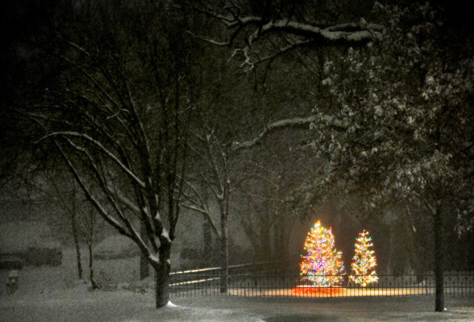 Photo - This Dec. 21, 2013 photo shows Christmas tree lights illuminating a yard as the snow falls late Saturday night Dec. 21, 2013, in Salina, Kan. A snow storm dropped almost a foot of snow Saturday night and Sunday morning in the Salina area. (AP Photo/Salina Journal, Tom Dorsey)