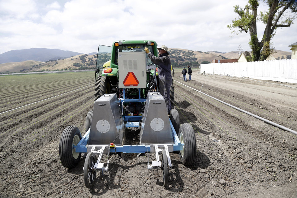 Photo - In this May 23, 2013, photo, field operations manager Matthew Rossow  tests the lettuce bot in Salinas, Calif.  In the Salinas Valley, the lettuce capital of the world, entrepreneurs with the Silicon Valley company Blue River Technology are testing the Lettuce Bot, a boxy robotic machine that can thin fields of lettuce, a job that now requires detailed hand work by 20 farm workers. (AP Photo/Marcio Jose Sanchez)