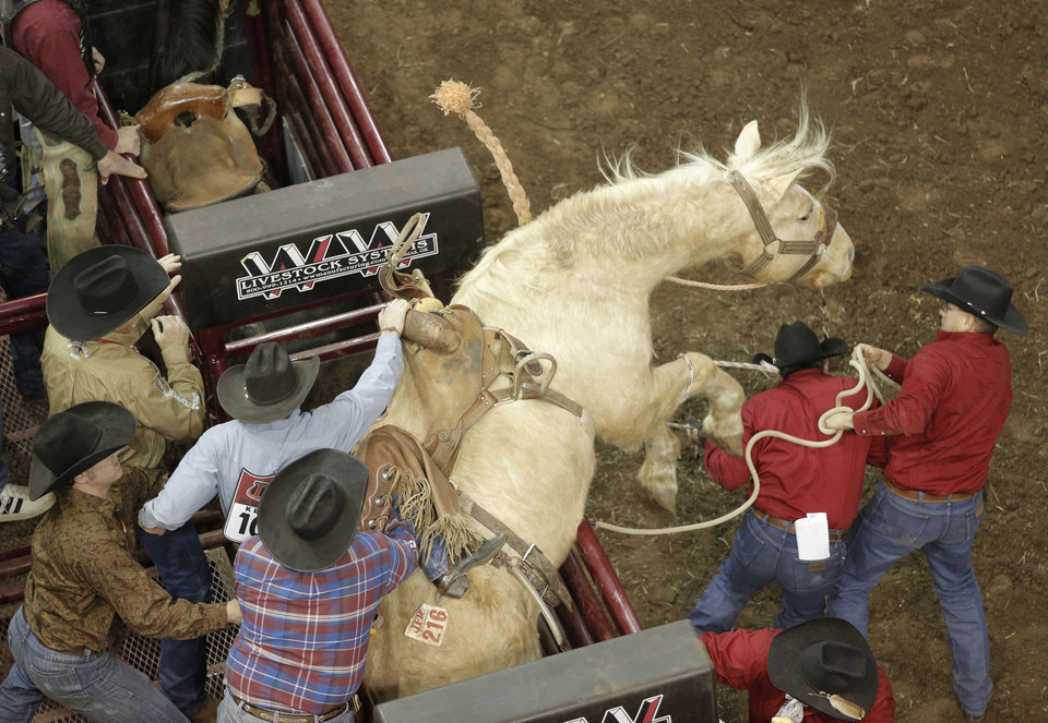 A horse tries to escape from its chute during the final performance of International Finals Rodeo at the State Fair Arena in Oklahoma City, Okla., Sunday, Jan. 20, 2013.  Photo by Garett Fisbeck, For The Oklahoman
