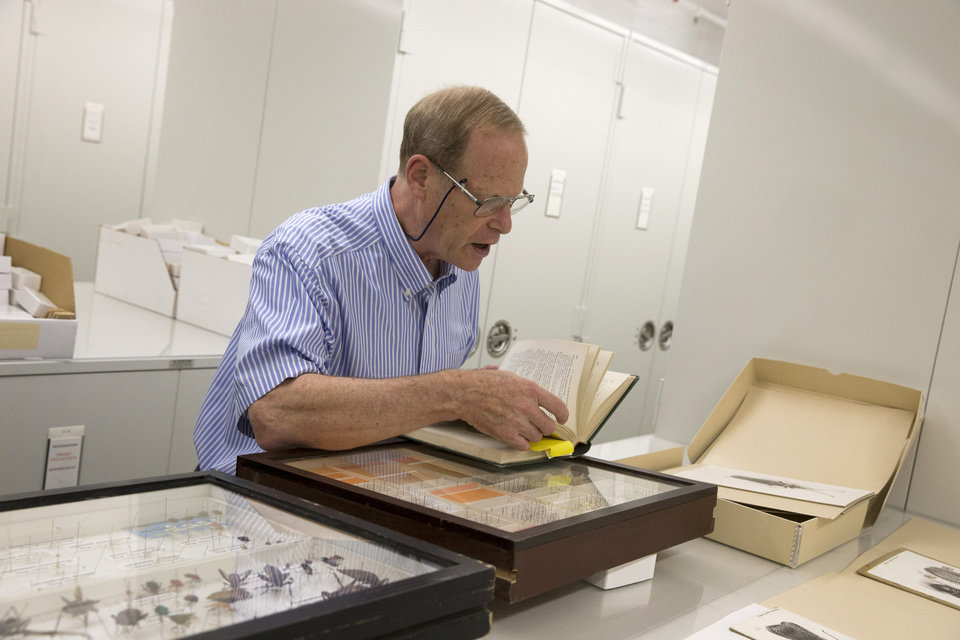 Photo - This photo taken June 5, 2014 shows Dr. David Furth at the Smithsonian Natural History museum Drake bug collection in Washington. When Dr. Carl J. Drake died in 1965 he left the Smithsonian's National Museum of Natural History $250,000 and his collection of thousands of bugs. Drake, an entomologist, spent his life studying insects, and he gave the Smithsonian a mission for his money: buy more bugs. After nearly half a century, however, the Smithsonian is having a hard time following the directives of Drake's will. (AP Photo/ Evan Vucci)