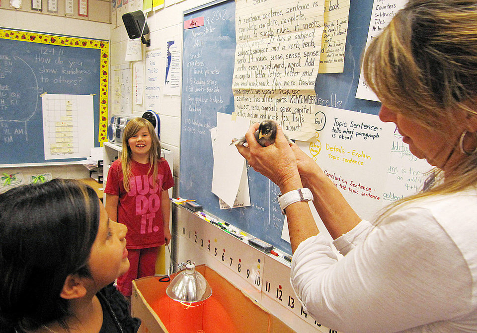 Middleton Heights Elementary Principal Robin Gilbert holds a baby chick May 9 while visiting an all-girls classroom of first- and second-graders at her school in Middleton, Idaho. AP photos