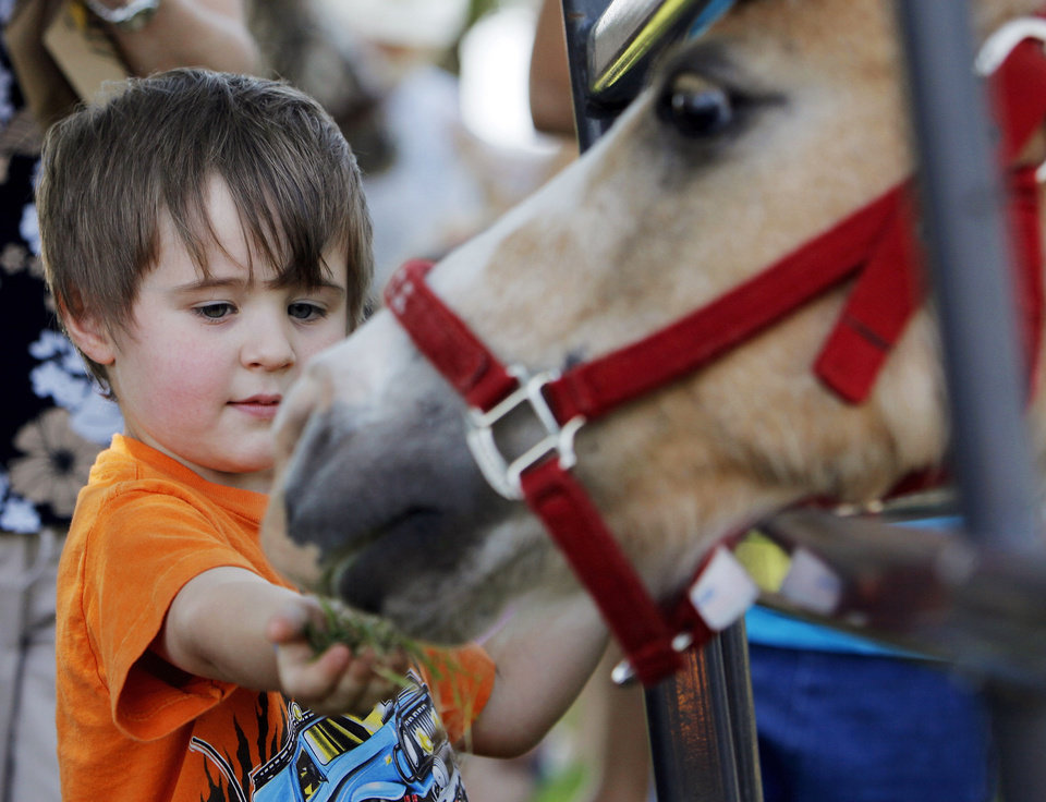 Photo - Right: Travis Copeland, 4, offers grass to a miniature horse during the Festival of the Child at Yukon City Park on Saturday.